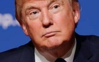 Donald Trump. De Wikipedia. Atribución: Michael Vadon