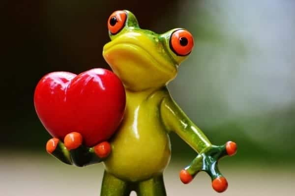 love valentine s day pose heart
