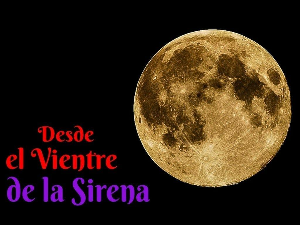 Desde el Vientre de la Sirena. Martin Cid