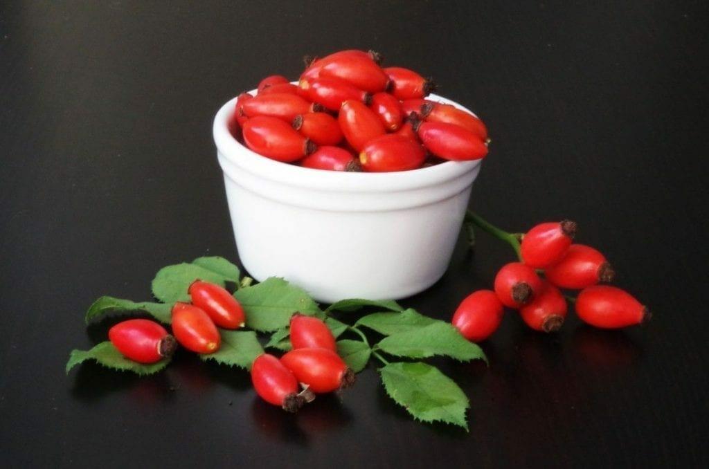 1519838013 darts fruits eglantine tea autumn health vitamins shrub 491692