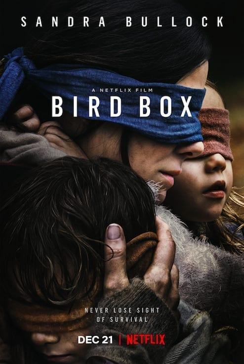 A Ciegas (Bird in the Box). Netflix