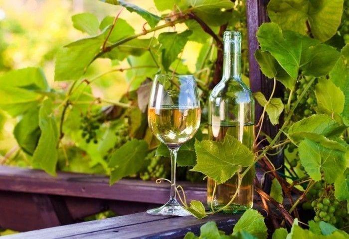 1565768296 Beneficios del vino blanco para salud e1432371832203
