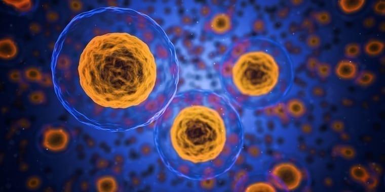 Primer tratamiento exitoso contra un gen que provoca varios tipos de cancer image 380