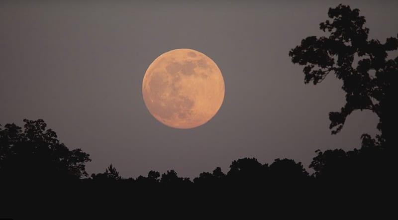 Superluna Rosa. Image Credit: NASA