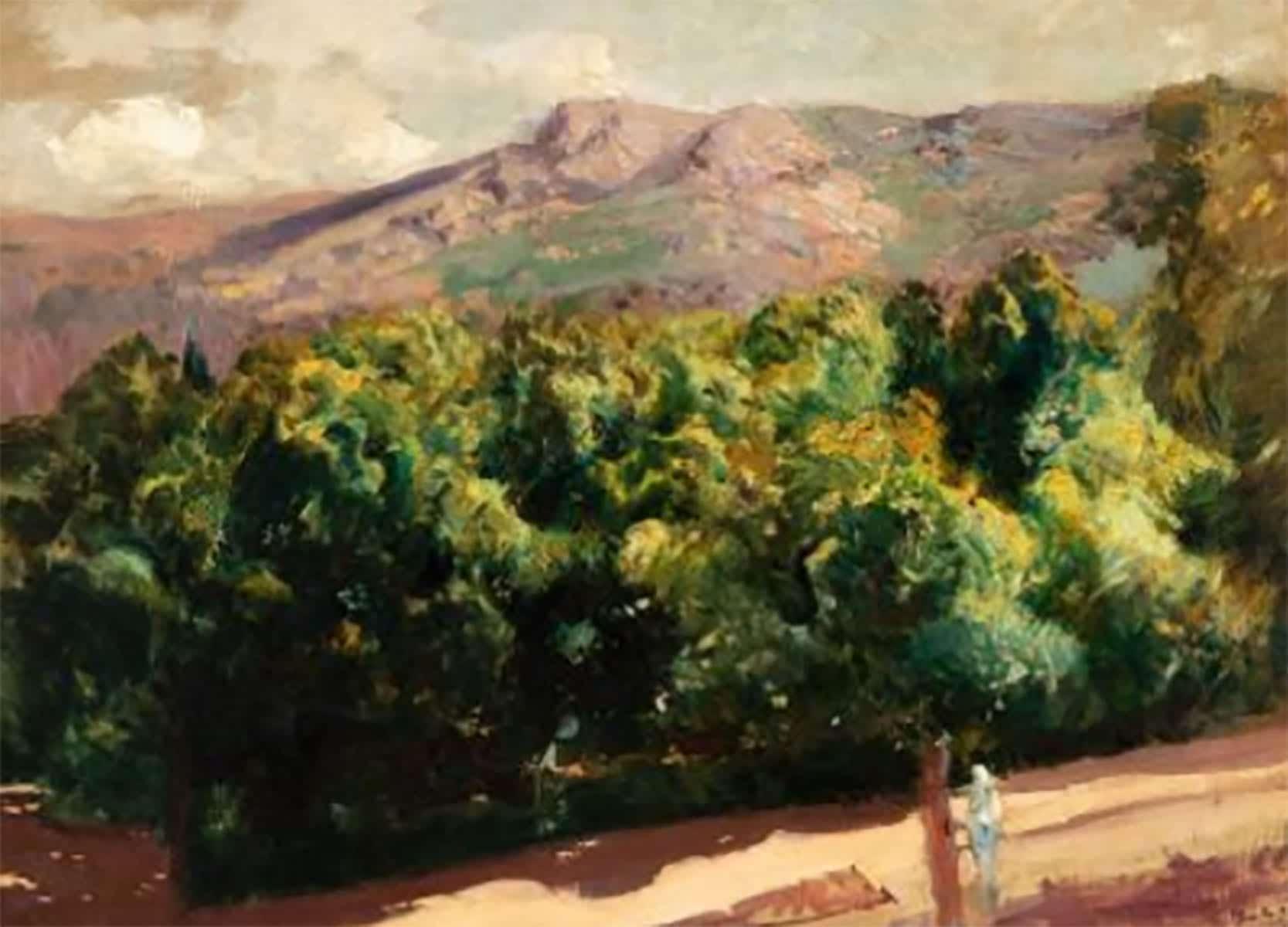 1588611641 La Selva