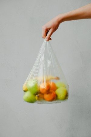 fruits in a plastic bag 3645504