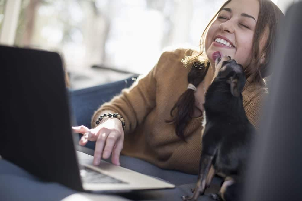 Tener Mascota Mejora la Salud, también en Confinamiento según la Universidad de York