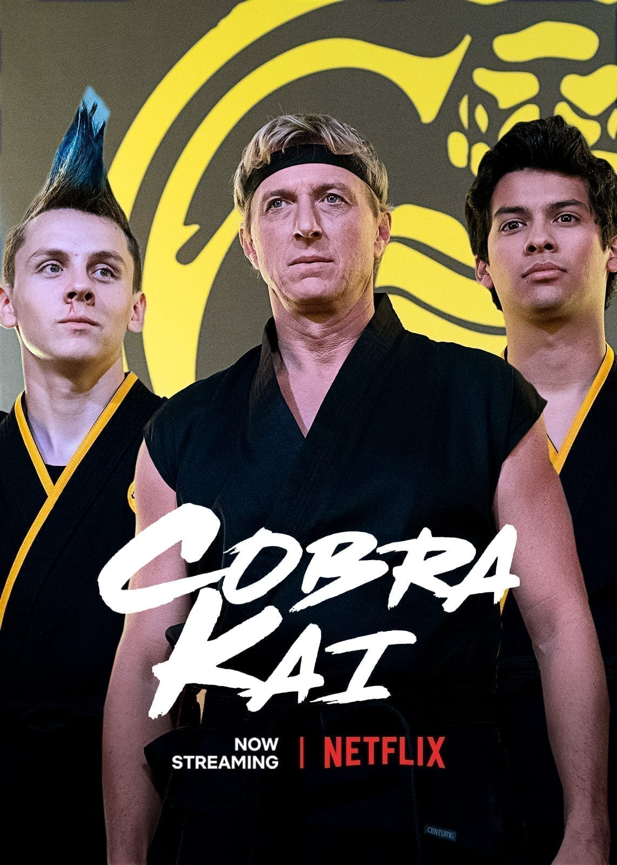 Cobra Kai. Season 2. Netflix Releases