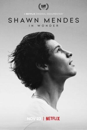 Shawn Mendes: In Wonder (2020). Netflix