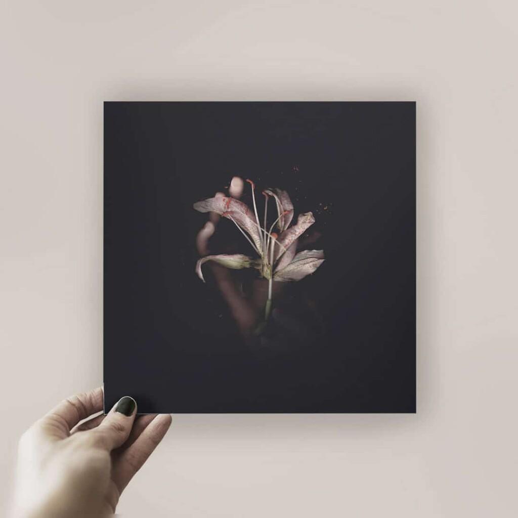 Lámina con la portada, obra de Cristina Peña, que incluye código de descarga de la canción, disponible en dispar.eu.