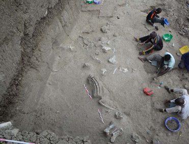 Origen y evolución cultural de Homo erectus en África oriental
